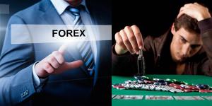 Bạn là một nhà đầu tư forex hay một con bạc?